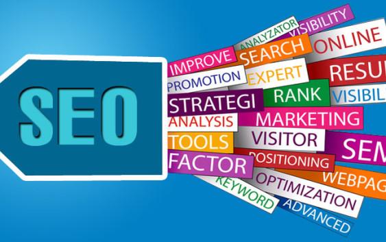 Có rất nhiều Dịch vụ SEO Website